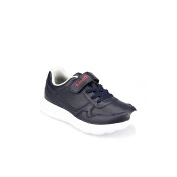 Men's Sneaker Shoes 000000000100355949
