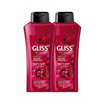 Color Shampoo 525 ml x 2 SET.HNKL.083