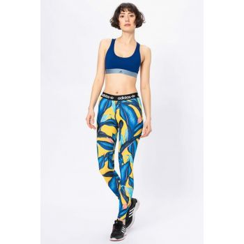 Women's Tights - - DH3056