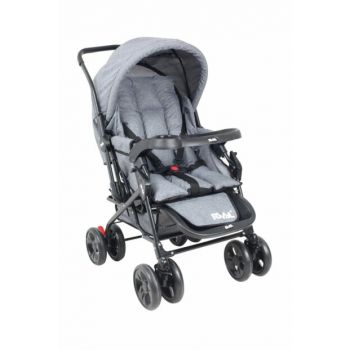 RV107 MAXI DOUBLE BABY CAR GRAY