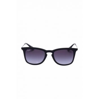 Unisex Sunglasses 7654 RB4221 622 / 8G 50