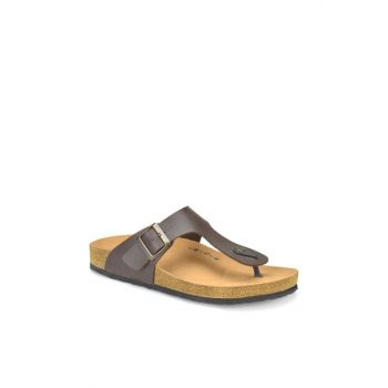 Brown Men's Slippers MEROL