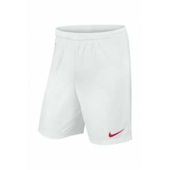 Unisex Shorts / Bermuda - Park Knit Dri-Fit Football Short - 725887-102