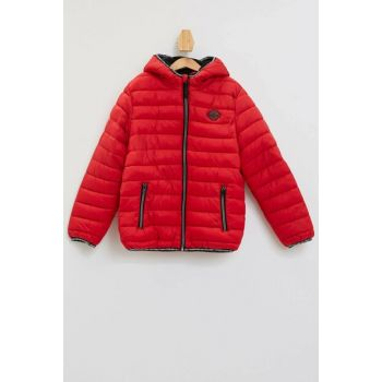 Hooded Jacket K8482A6.19AU.RD310