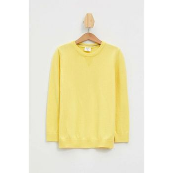 Yellow Boy Basic Sweater Pullover K8822A6.19AU.YL38