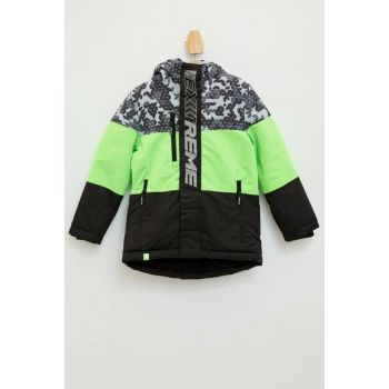 Color Block Hooded Coat K8516A6.19WN.GN869
