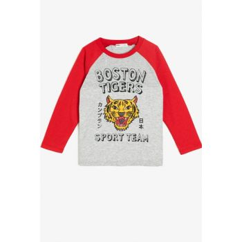 Boys' T-Shirts 0KKB16496TK