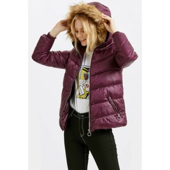 Women's Purple Coat 8W1210Z8