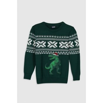 Boy's Dark Green Hlw Sweater 9WH548Z4
