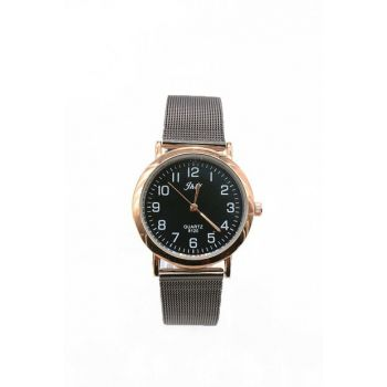 Gold Color Case Anthracite Color Mesh Watch Women's Watch 8699000096193