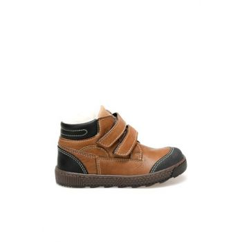 2404D4 Brown Boy Shoes