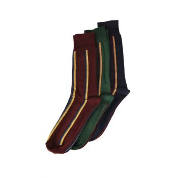 Multicolor Men Striped 3 Socks TMNAW20CO0047