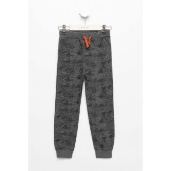 Gray Young Men's Tiger Patterned Slim Fit Jogger Pants K2813A6.19SP.GR228