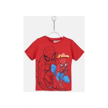 Boy's T-Shirt And Singlet 9S6225Z4