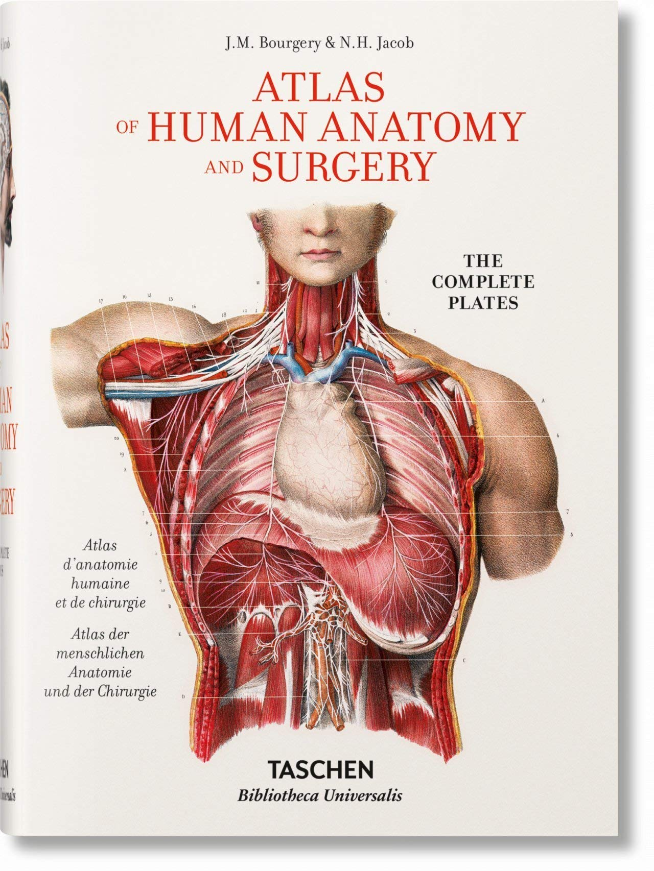 Jean Marc Bourgery. Atlas of Human Anatomy and Surgery (English), Jean-Marie Le Minor