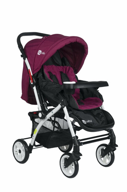 Tommybaby 4 Baby Eagle Aluminum Luxury Double Direction Baby Stroller 2018 / AL-1-5