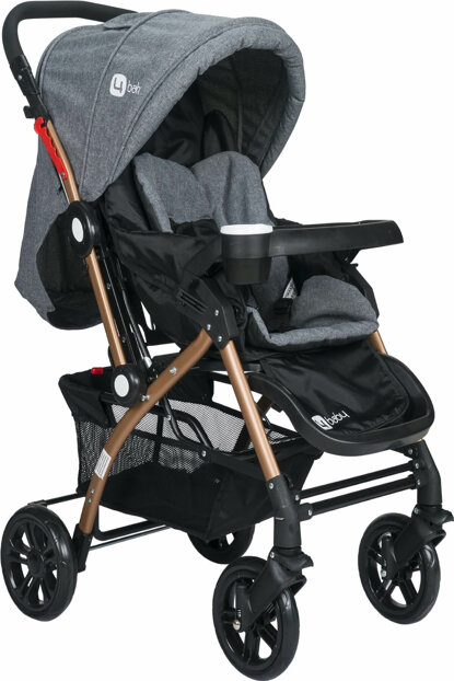 Eagle Gold Aluminum Luxury Double Direction Baby Stroller 2019 Smoked / AL-2-2