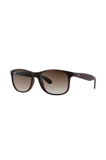 Unisex Sunglasses RB4202 607313 55 Download