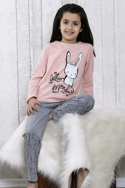 Girl's Pink Rabbit Printed 2-Piece Pajamas Set LB3043