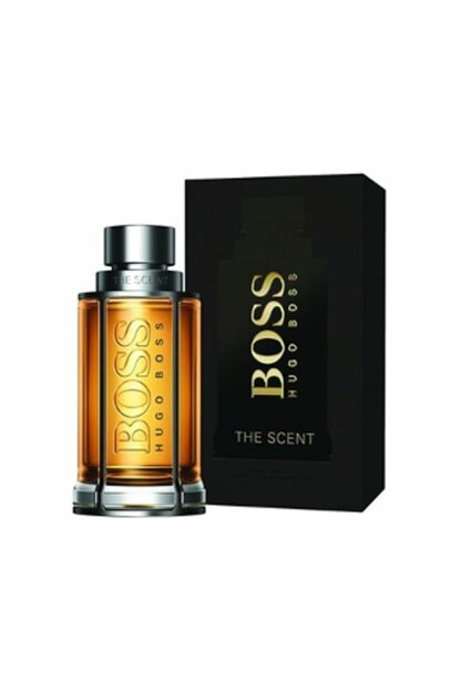 The Scent Edt 100 ml Men's Fragrance 0737052972305