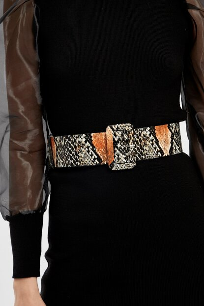 Women's Black Camel Snake Patterned Square Buckle Belt 20K679132