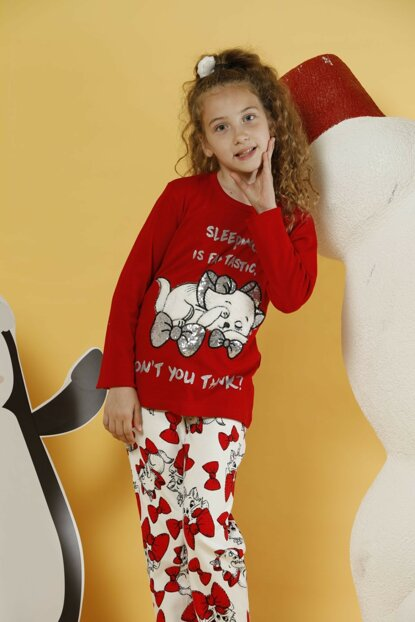 Girl Patterned Embroidery Interlock Pajama Set 19255076