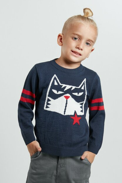 Cat Star Boys Sweater CFF-19S1-019