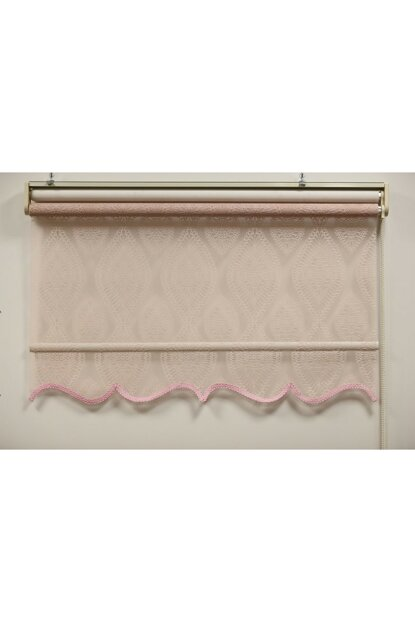 170x260 Double Mechanism Pink Leaf Pattern Tulle Roller Blinds A1003315
