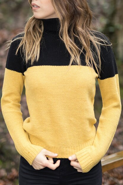 Women Yellow & Black Yellow & Black Turtleneck Sweater 9YXK6-41559-10