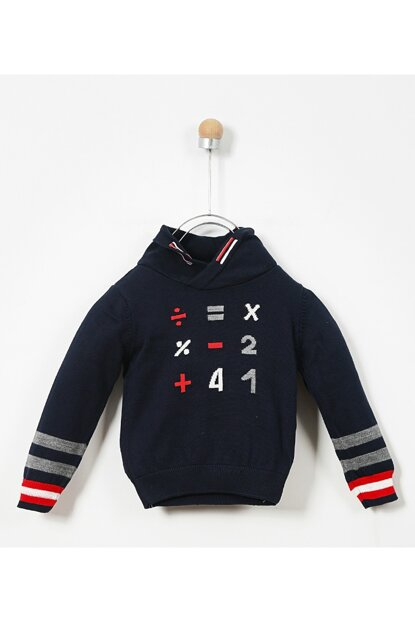 Boys Sweater Sweater 19209050100