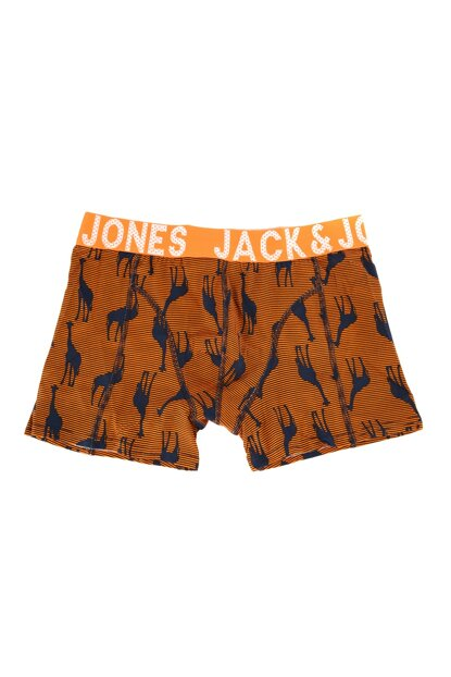 Boxer - Stripe Animal Trunks 12161474